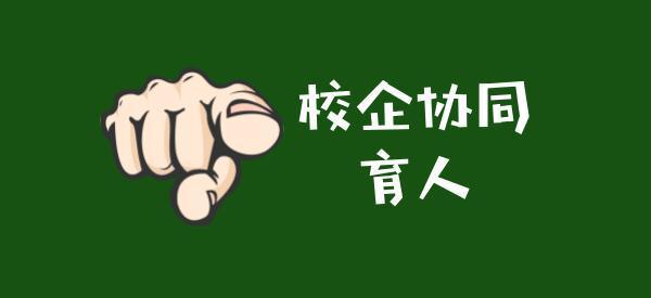 深圳智盛信息技ji)豕gu)份有限公司(si)2020年第一批(pi)產學合作(zuo)協同育人項目公示